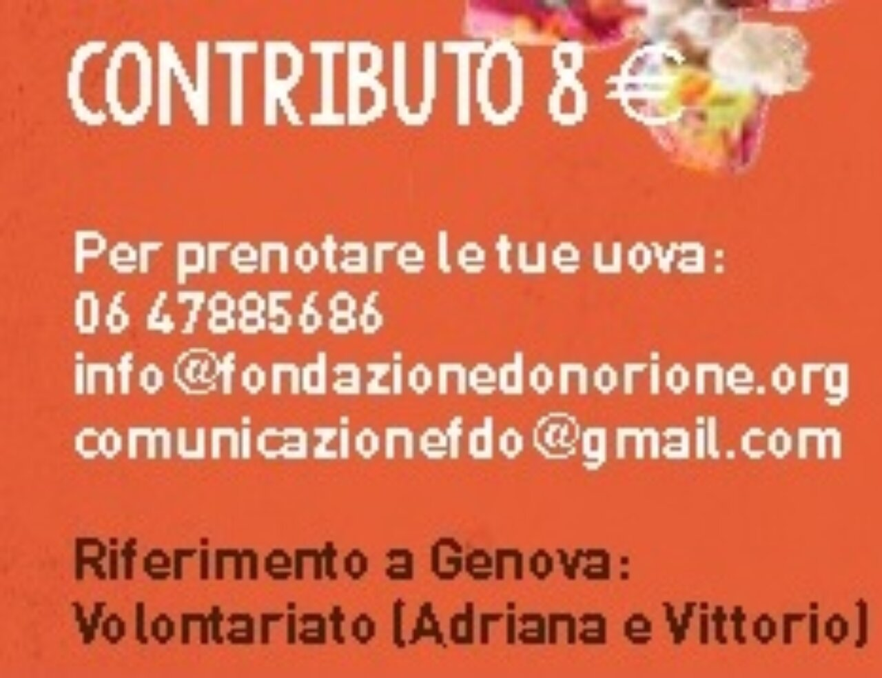 contributo 8